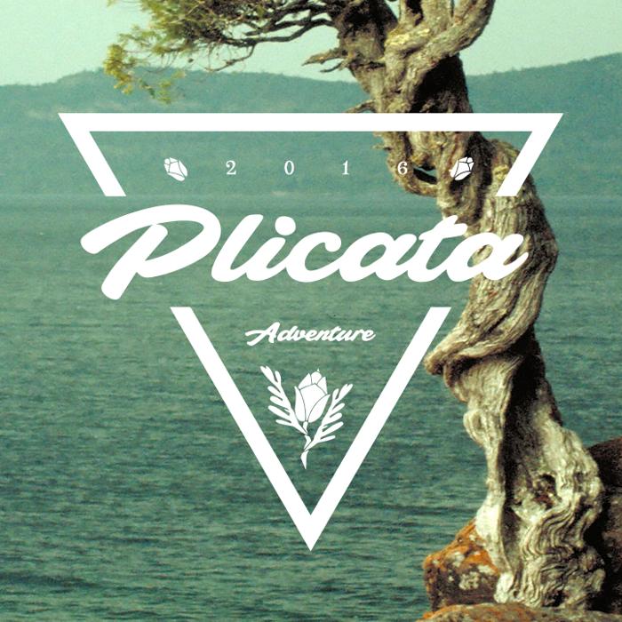 Plicata Font poster