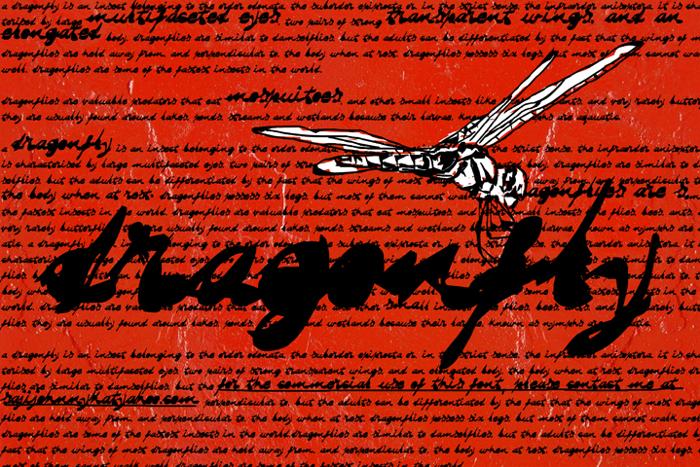 DRAGONFLY saji Font poster