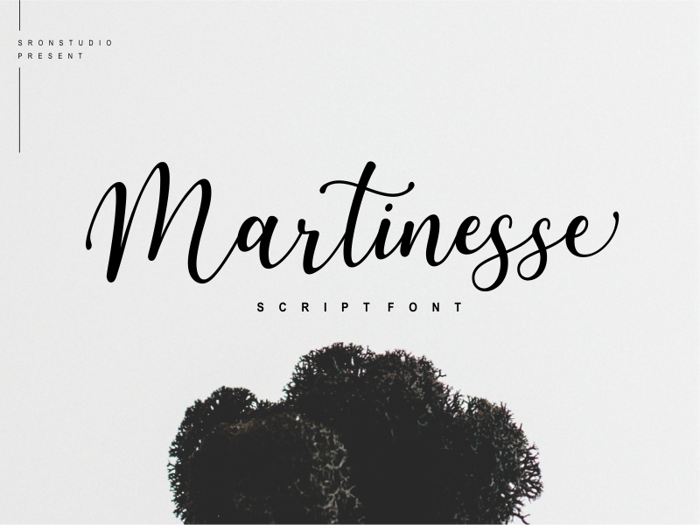 Martinesse Font poster
