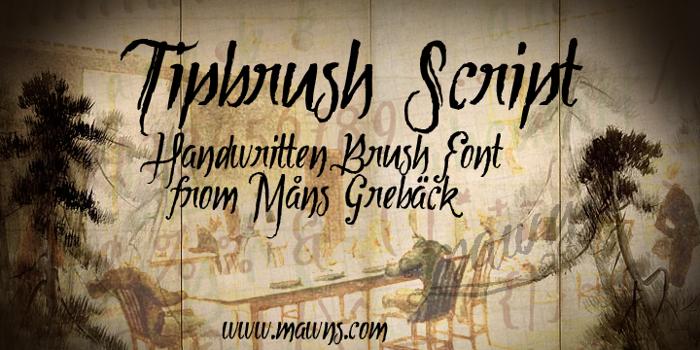 Tipbrush Script Font poster