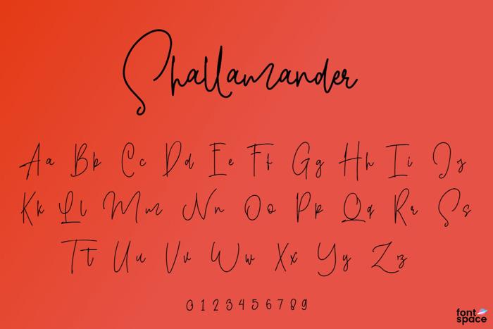 Shallamander Font poster