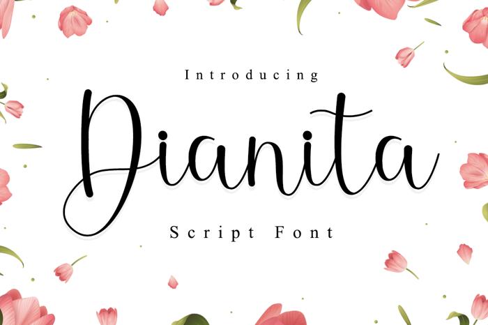 Dianita Font poster