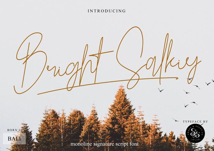 Bright Salkiy poster