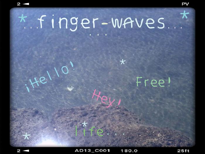 finger waves Font poster