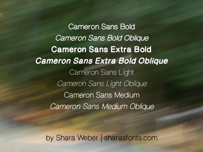 Cameron Sans Font poster