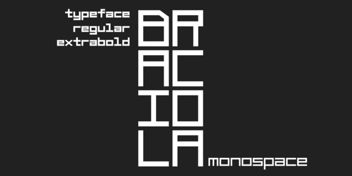 Braciola MS Font poster