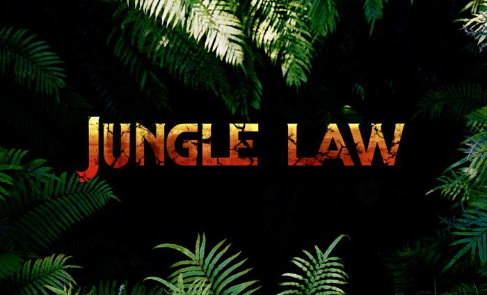 jungle law Font poster