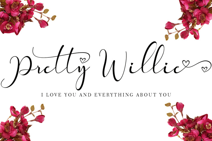 Pretty Willie Font poster