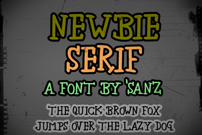 newbie serif Font poster