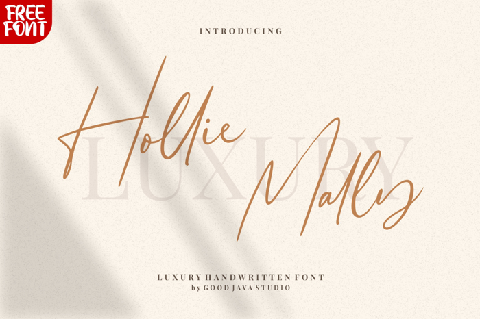 Hollie Mally Font poster