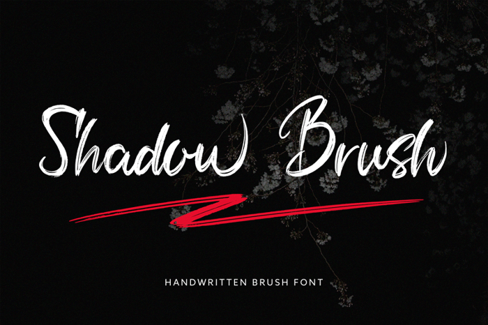Shadow Brush Font poster