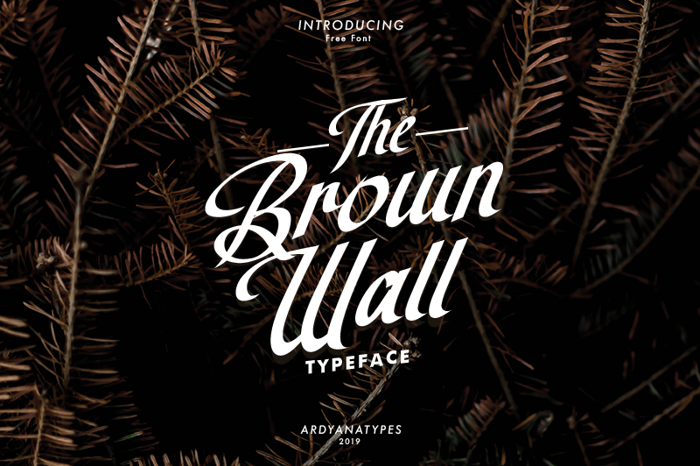 The Brown Wall Font poster