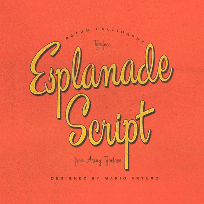 Esplanade Script Font poster