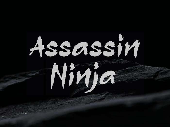 a Assassin Ninja Font poster