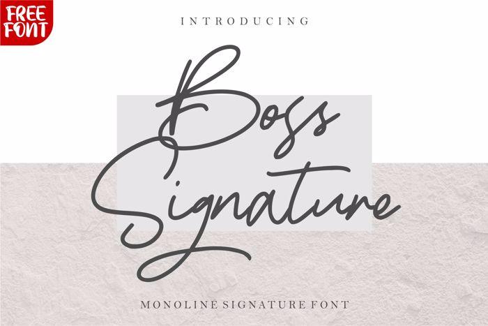 Boss Signature Font poster