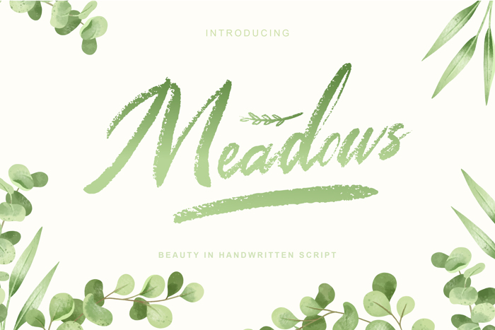 Meadows Font poster