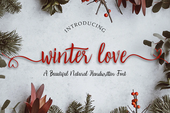 Winter Love Font poster