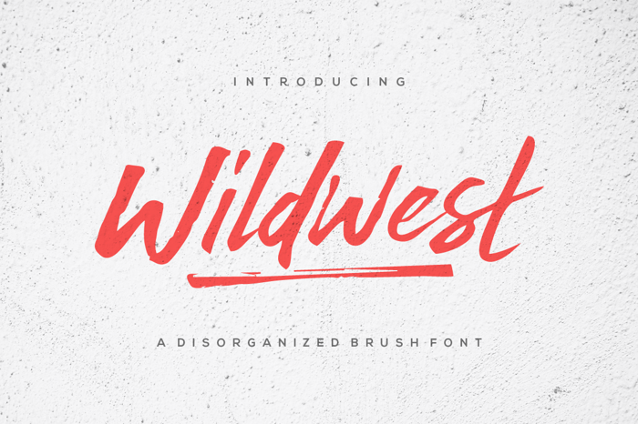 Wildwest Font poster