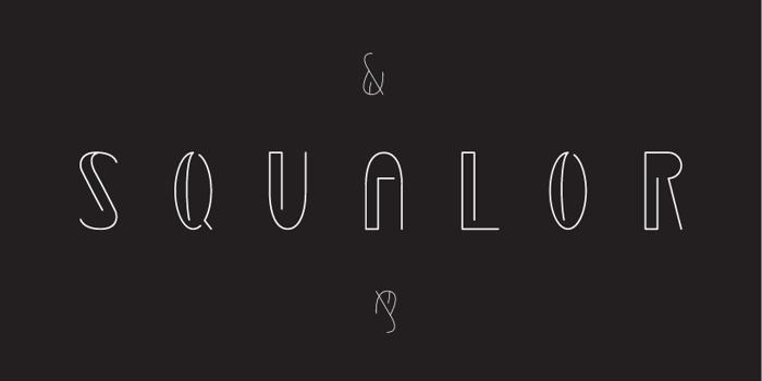 Squalor Font poster