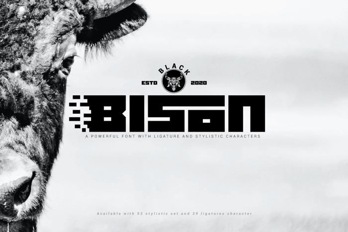 Black bison Font poster