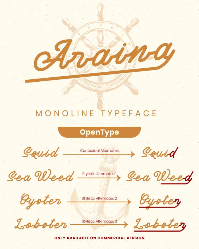 Araina Font poster