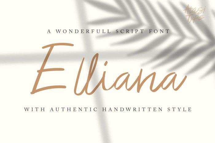 Elliana Script Font poster