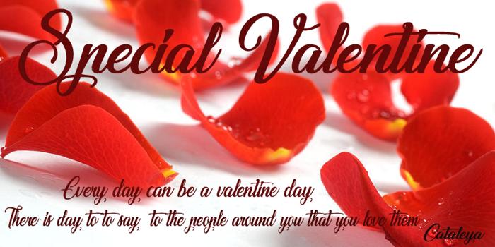 Special Valentine Font poster