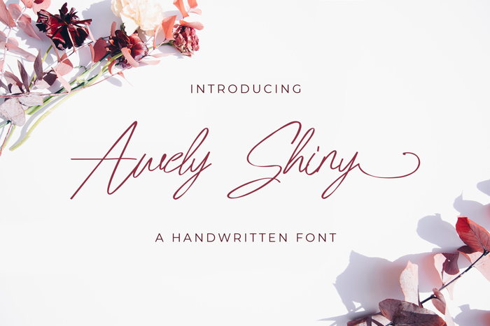 Awely Shiny Font poster
