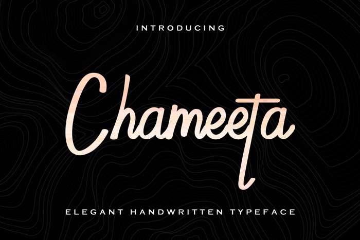 Chameeta Font poster