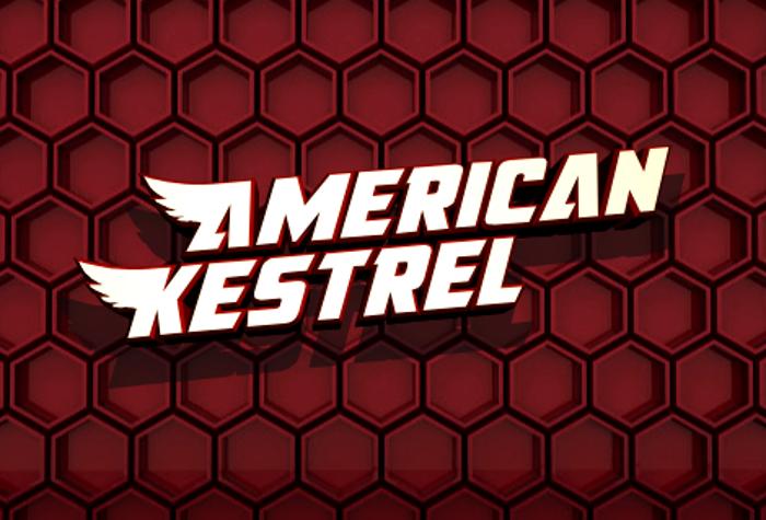 American Kestrel Font poster
