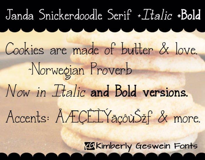 Janda Snickerdoodle Serif Font poster
