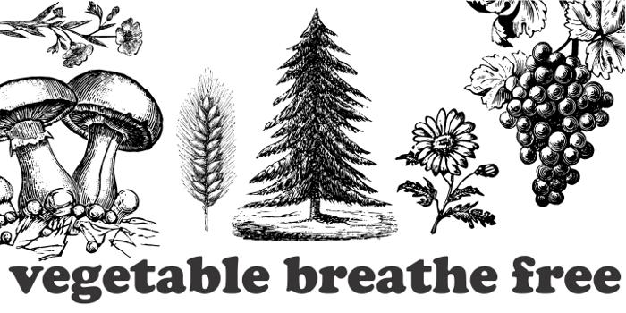 Vegetable Breathe Free Font poster