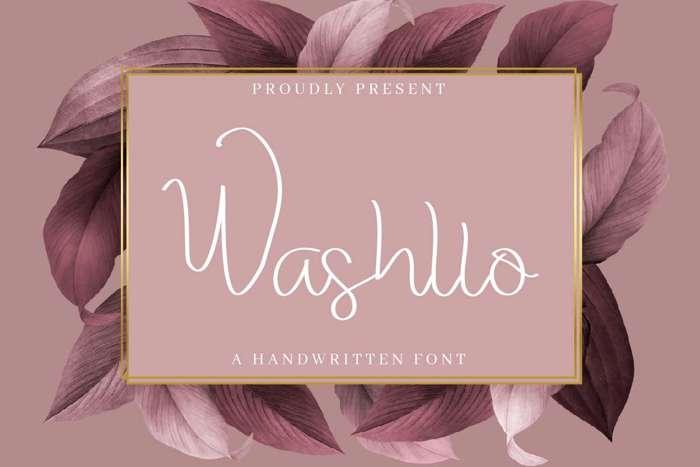 Washllo Font poster