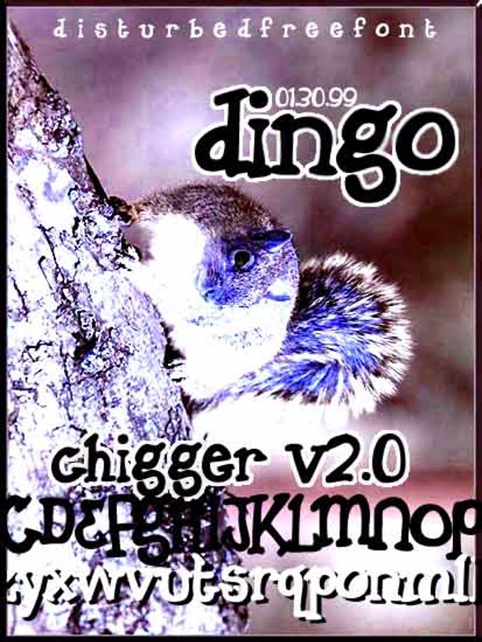 Dingo Font poster