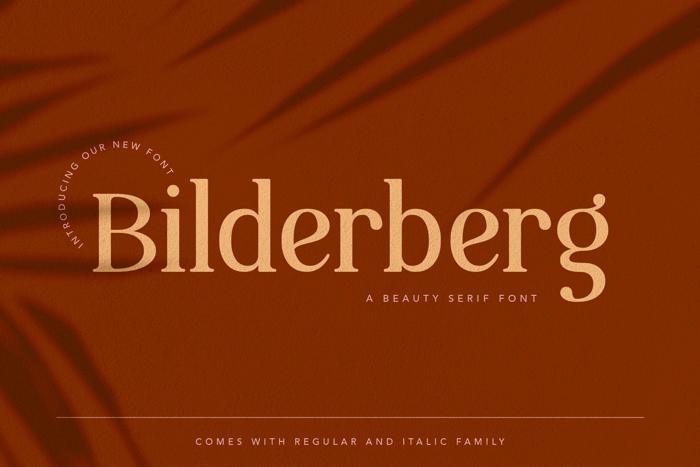 Bilderberg Font poster