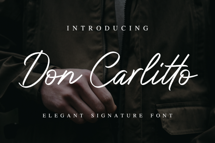 Don Carlitto Font poster