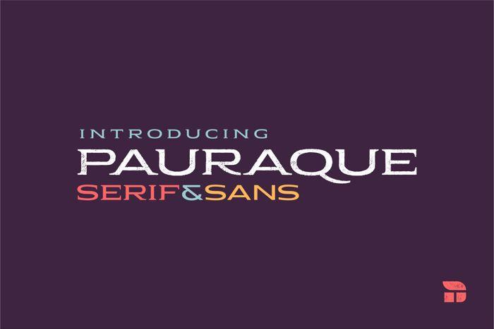 Pauraque_Serif_Rough Font poster
