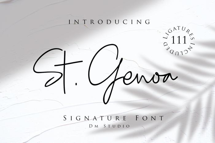 St . Genoa Font poster