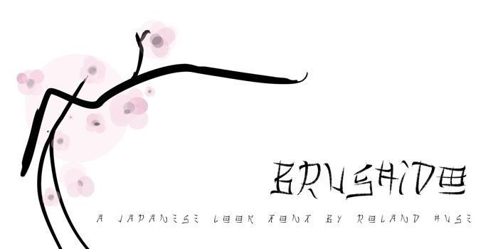 Brushido Font poster