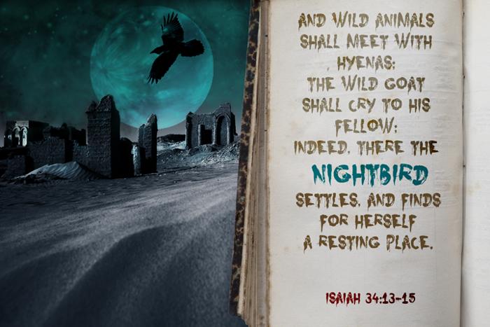 Nightbird Font poster