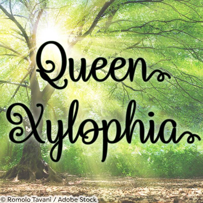 Queen Xylophia Font poster