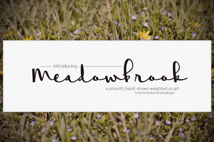 Meadowbrook Font poster