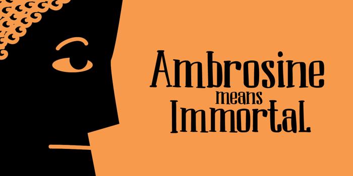 DK Ambrosine Font poster