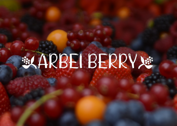 ARBEI BERRY Font poster