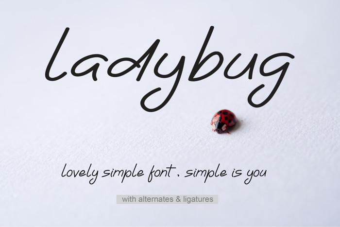 Ladybug Font poster
