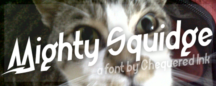 Mighty Squidge Font poster