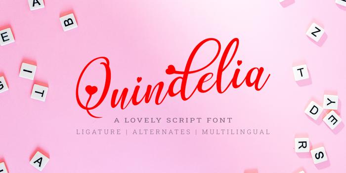 Quindelia Font poster