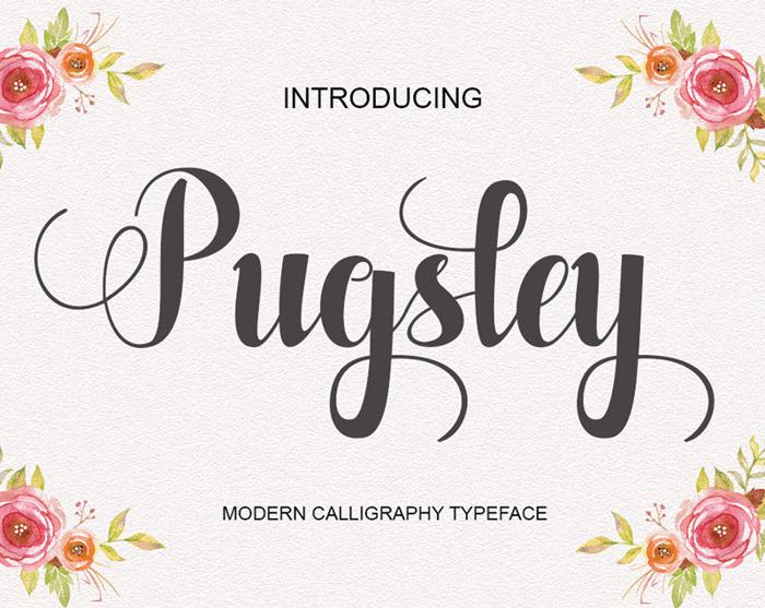 Pugsley Font poster