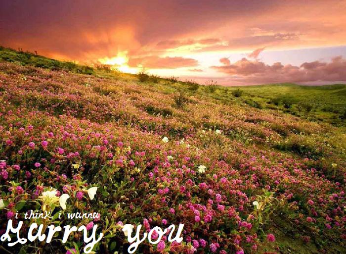 MarryYou Font poster