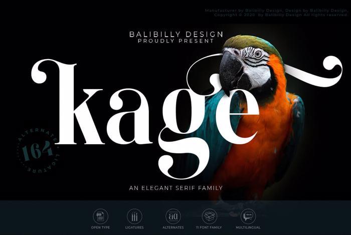 KAGE - Freebies Black Font poster